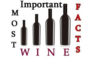 Most important wine facts (Most important wine facts)