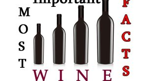 Most important wine facts