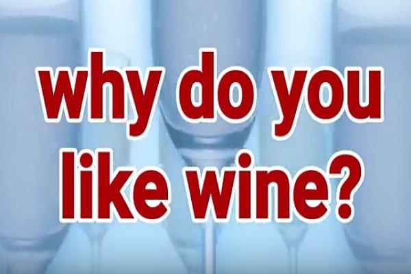 Why Do You Like Wine