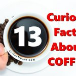 13 Curious Facts About Coffee