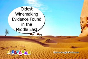 Oldest Winemaking Evidence Discovered in the Middle East - Facts About Wine 1