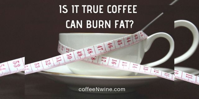 Is It True Can Coffee Burn Fat - Is It True Coffee Can Burn Fat