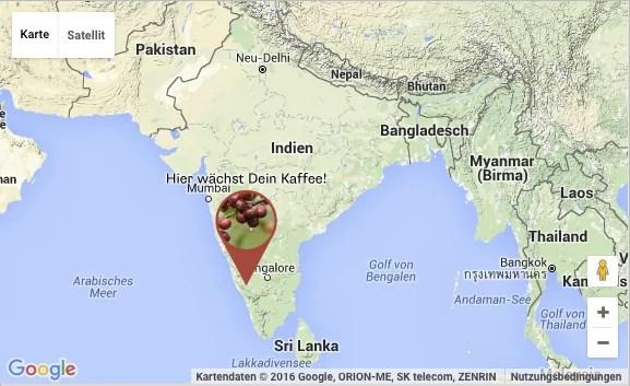 yirgasantos-indien