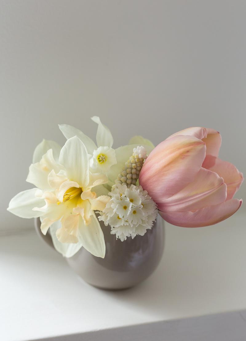 kukkia omasta puutarhasta, sipulikukat, puutarhan kuulumisia