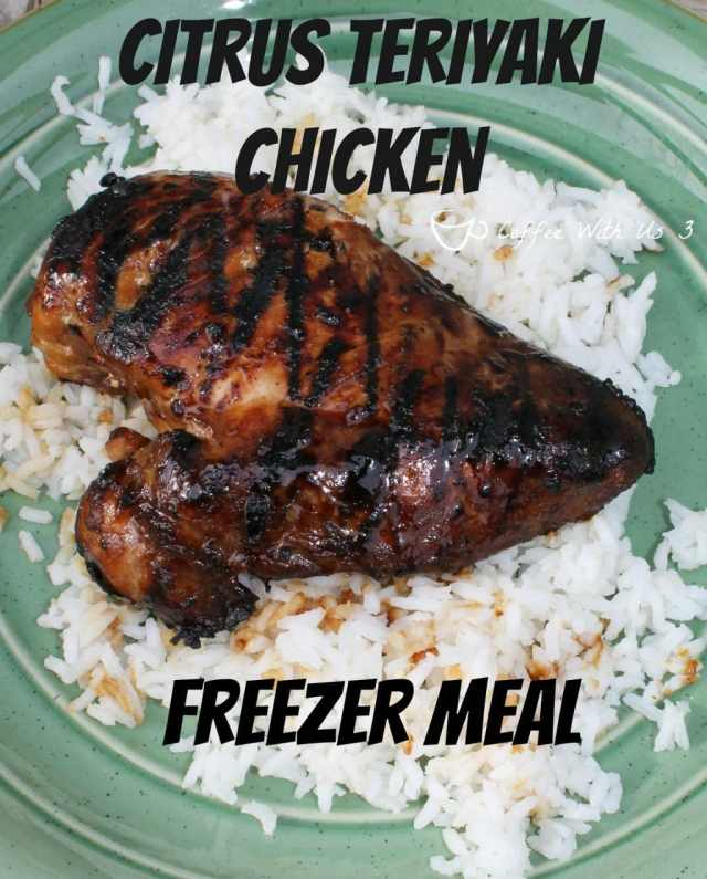 Citrus Teriyaki Chicken Freezer Meal