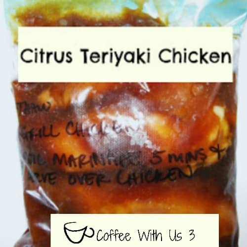Citrus Teriyaki Chicken by Coffee With Us 3