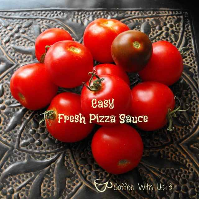 Great fresh pizza sauce recipe for using fresh tomatoes from your garden! This recipe doesn't involve any cooking, so the sauce tastes so fresh!