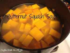 Butternut Squash in chicken stock