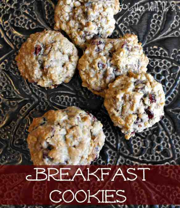 Breakfast Cookies Recipe | Do you love cookies? Then you will love these cookies full of chocolate chips & cranberries.  They make a perfect snack or even a great make ahead breakfast! Repin to save for later.