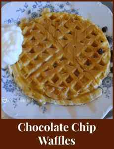 Chocolate Chip Waffles with PB