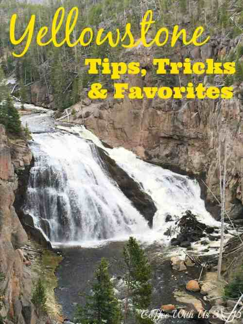 Yellowstone Tips Tricks & Favorites