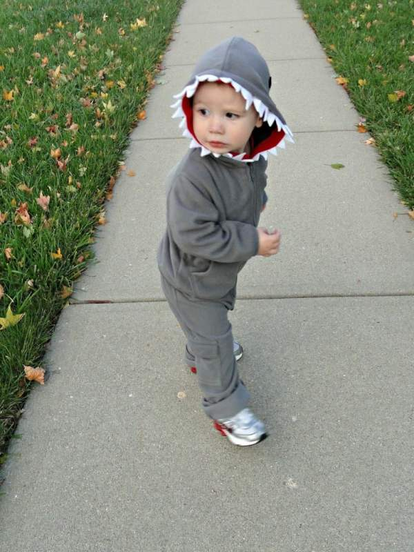 baby-shark-too-cute