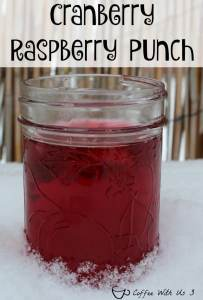 cranberry-raspberry-punch