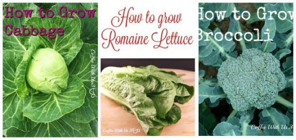 How to Grow2