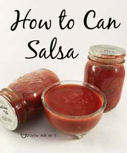 Learning How to Can Salsa is not terribly difficult and you can make it exactly like you prefer. It's a great way to preserve the harvest from your garden.