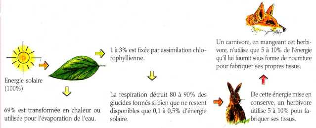 energie solaire definition