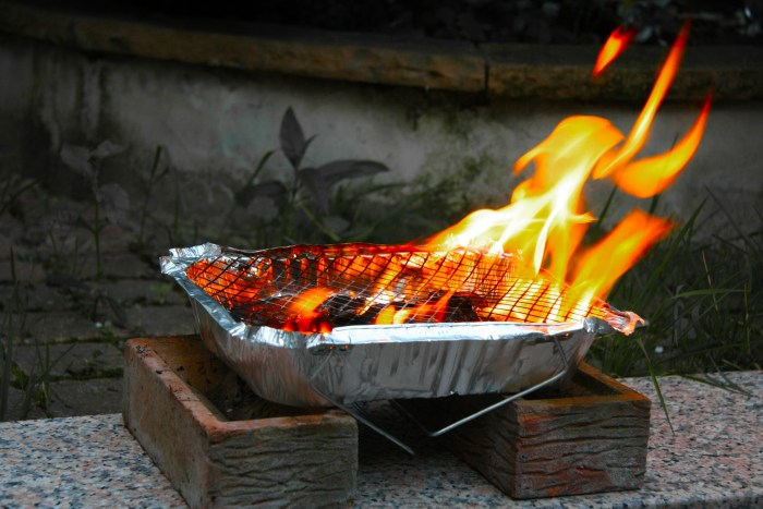 gas barbecue uk