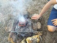 propane barbecue