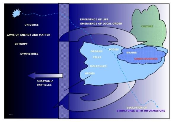 Eine Schema, wie Leben im Universum entstehen konnte (in späteren Blogeinträgen weiter verfeinert)