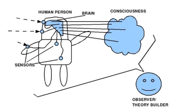 Gehirn im Körper mit Bild 1: Bewusstsein - Beobachter