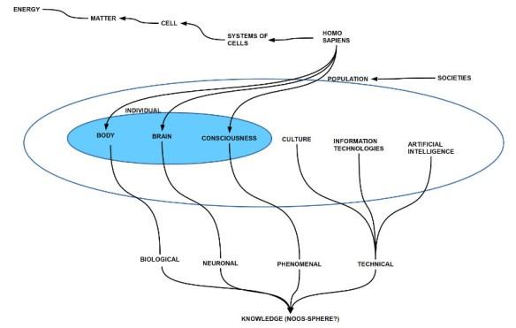 Die Kondensierung von matrieller Komplexität über Materie, biologischer Zelle, Systemen von Zellen, homo sapiens (hs), hin zu einer biologischen Population, die sich aufgrund der Geistigkeit kulturell und technologisch in eine Vielzahl von Gesellschaften ausgeformt hat. Durch neue Informationstechnologien und künstliche Intelligenz kann die Späre des Wissens (Noos-Sphäre) erweitert werden