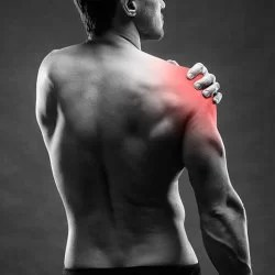 Fights Chronic Inflammation & Slows Aging