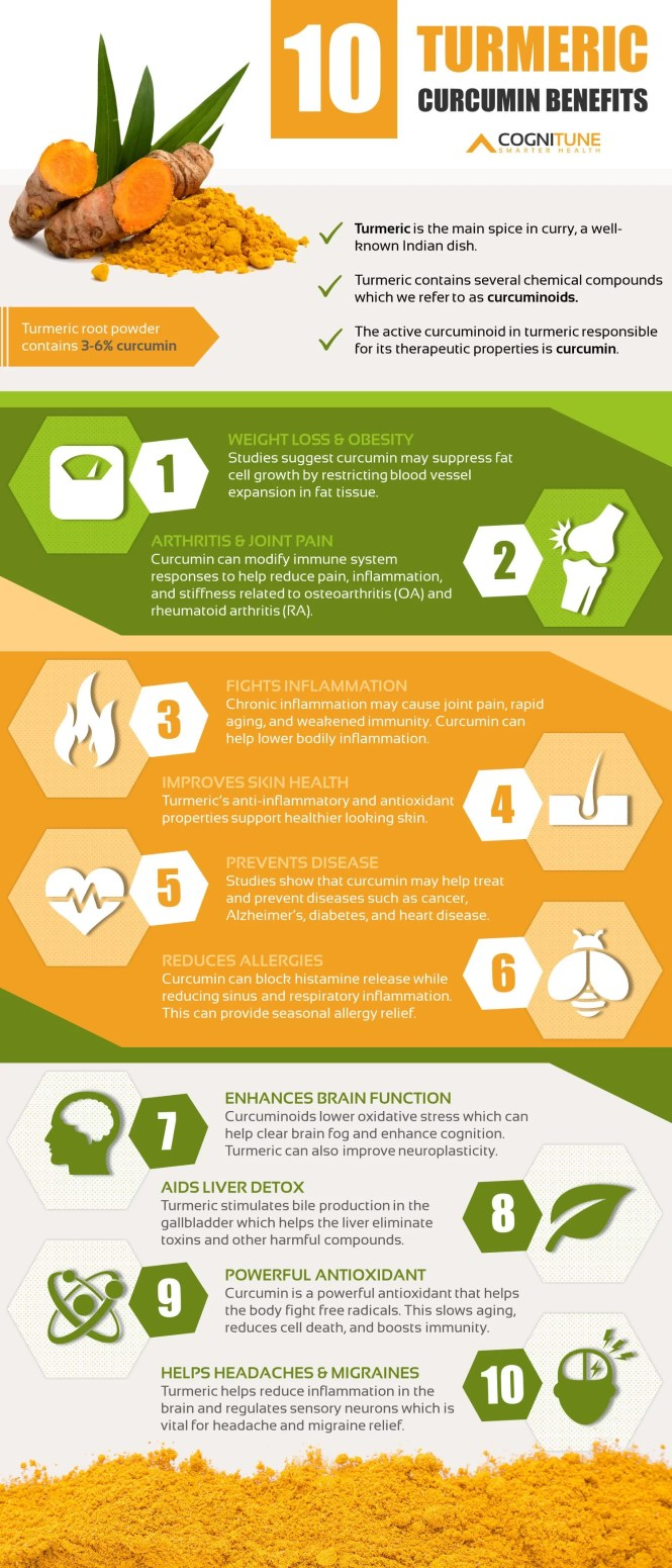 10 Turmeric Curcumin Health Benefits and Uses Infographic