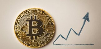 Bitcoin Blok Ödülü