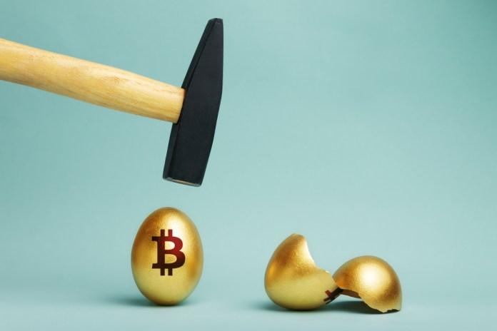 Bitcoin Cash ile Tavuk Yemleme