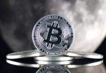 Usta Analist, Bitcoin'in Dibini Bilmişti Şimdide %1000 Büyüme İle Önümüzdeki Zirveyi Söylüyor
