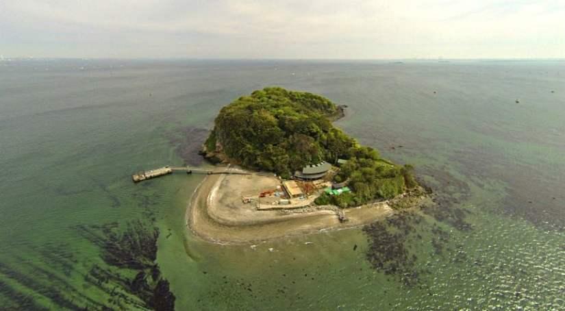 Ilha para alugar no Japão