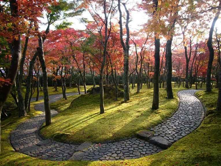 Museu Hakone