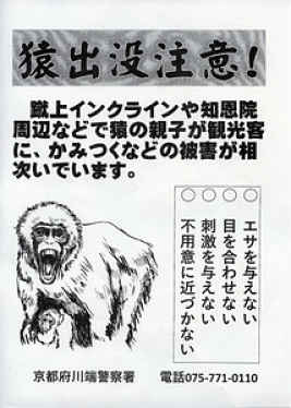 Flyer alertando turistas em Kyoto