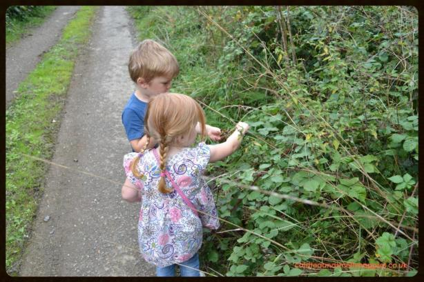 foraging with kids