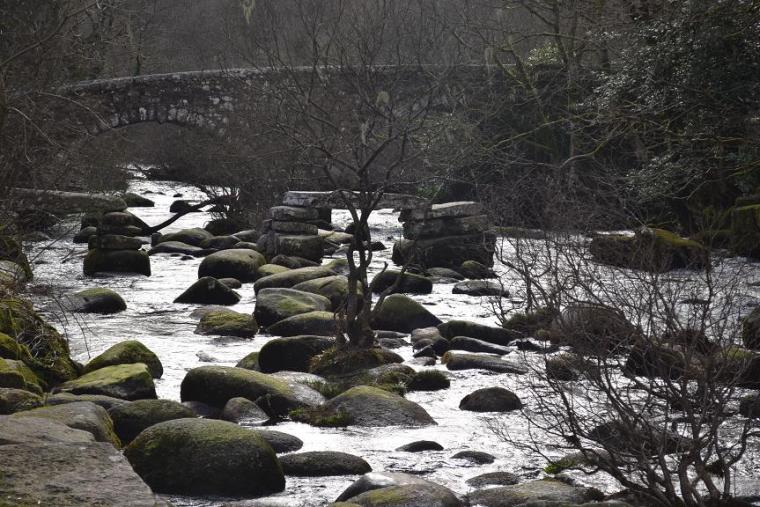 Dartmeet Devon5