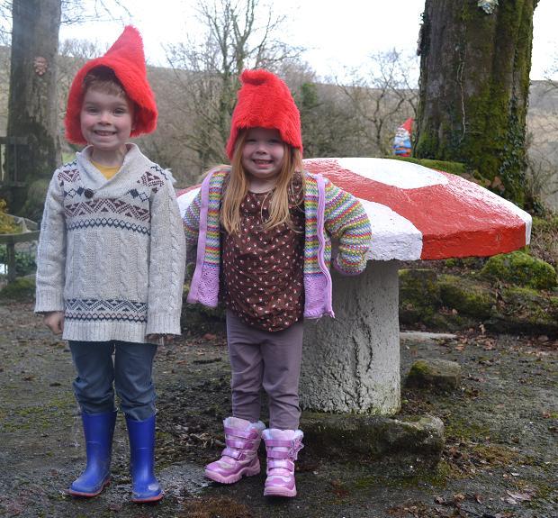 Pixieland Dartmoor Devon toadstool
