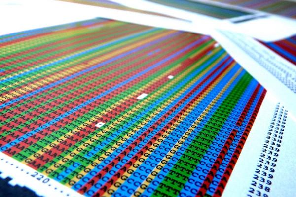ADN por Shaury Nash