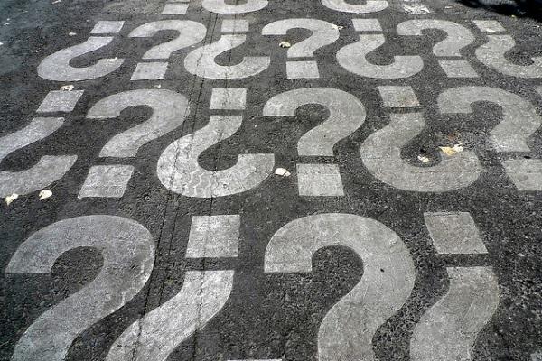 Pregunta por Veronique Debord-Lazaro
