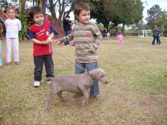 expo-mascotas-2008-23