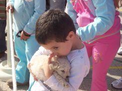 expo-mascotas-2008-54
