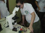 microbiologia-15