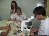microbiologia-19