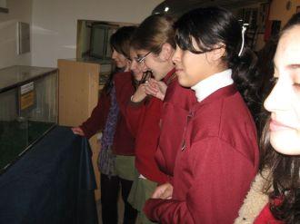 museos-de-ciencias-naturales-3ros-20