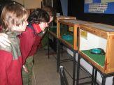 museos-de-ciencias-naturales-3ros-28