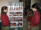museos-de-ciencias-naturales-3ros-7