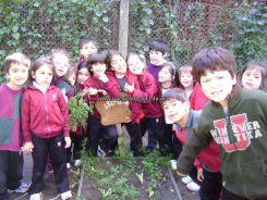 calicata-jardin-71