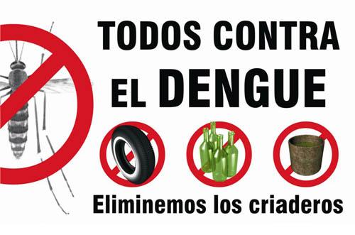 contra-el-dengue