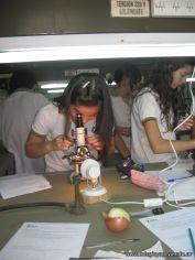 trabajo-de-laboratorio-4to-2