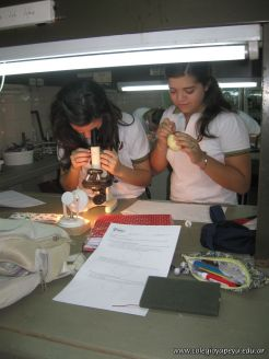 trabajo-de-laboratorio-4to-4