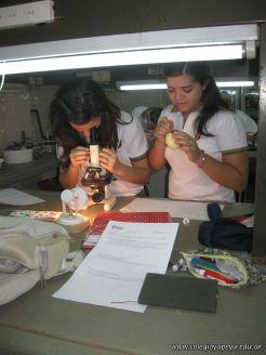 trabajo-de-laboratorio-4to-4